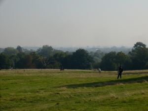 It was a bit hazy but you could see Canary Wharf in the distance